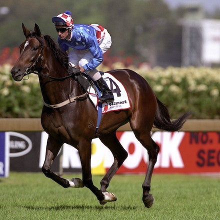 MakybeDiva-3424-33a-18x12 - Makybe Diva and Glen Boss canter to the barrier before the Ranvet Stakes.