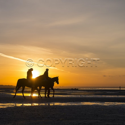 Winx-Foxplay-10152017-2263 - Champion mare WINX (bay mare, ridden by Ben Cadden) goes to Altona Beach on Sunday morning with her friend FOXPLAY (grey mare...