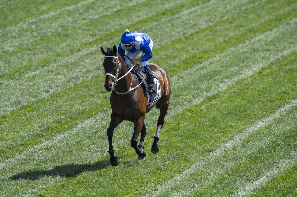 Winx-BowmanHugh-10072017-8072 - WINX (Street Cry - Vegas Showgirl) wins her 21st successive race in the G1 Turnbull Stakes.  Photo - Bronwen Healy.  The...