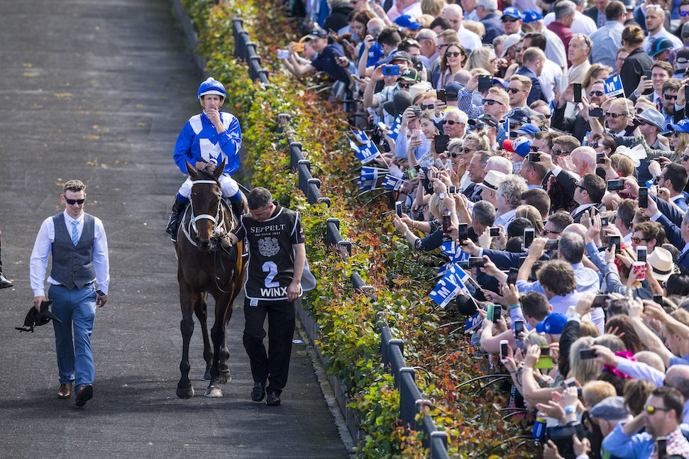 Winx-BowmanHugh-10072017-8537 - WINX (Street Cry - Vegas Showgirl) wins her 21st successive race in the G1 Turnbull Stakes.  Photo - Bronwen Healy.  The...