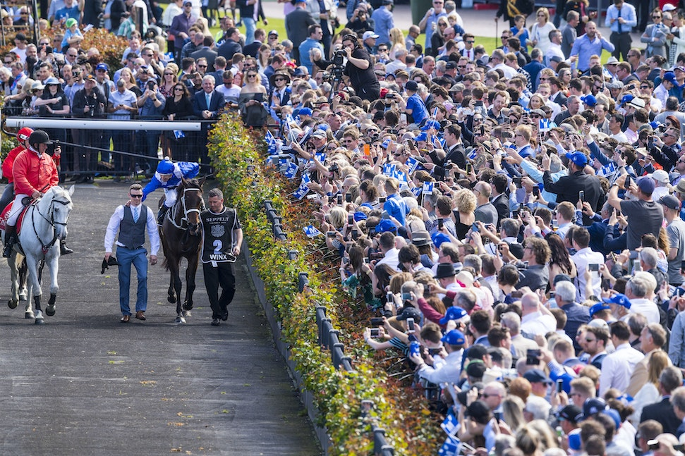 Winx-BowmanHugh-10072017-8400 - WINX (Street Cry - Vegas Showgirl) wins her 21st successive race in the G1 Turnbull Stakes.  Photo - Bronwen Healy.  The...