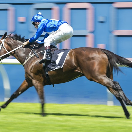 Winx-BowmanHugh-02172018-8258 - WINX (Street Cry - Vegas Showgirl) wins her Official Barrier Trial at Randwick Racecourse.  Ridden by Hugh Bowman.  Photo...