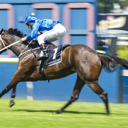 Winx-BowmanHugh-02172018-8257 - WINX (Street Cry - Vegas Showgirl) wins her Official Barrier Trial at Randwick Racecourse.  Ridden by Hugh Bowman.  Photo...