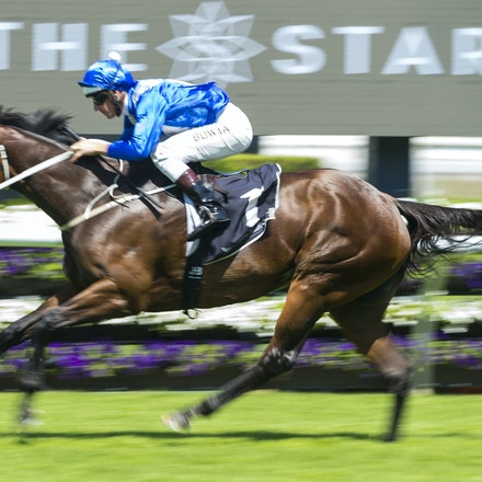 Winx-BowmanHugh-02172018-8248 - WINX (Street Cry - Vegas Showgirl) wins her Official Barrier Trial at Randwick Racecourse.  Ridden by Hugh Bowman.  Photo...