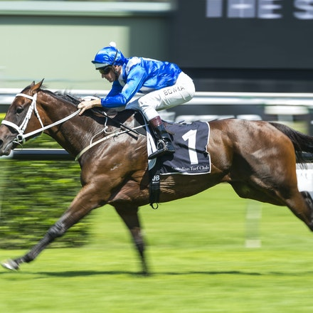 Winx-BowmanHugh-02172018-8245 - WINX (Street Cry - Vegas Showgirl) wins her Official Barrier Trial at Randwick Racecourse.  Ridden by Hugh Bowman.  Photo...