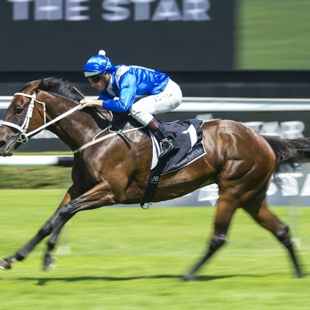 Winx-BowmanHugh-02172018-8244 - WINX (Street Cry - Vegas Showgirl) wins her Official Barrier Trial at Randwick Racecourse.  Ridden by Hugh Bowman.  Photo...