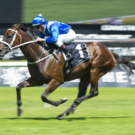Winx-BowmanHugh-02172018-8243 - WINX (Street Cry - Vegas Showgirl) wins her Official Barrier Trial at Randwick Racecourse.  Ridden by Hugh Bowman.  Photo...