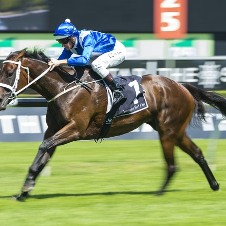 Winx-BowmanHugh-02172018-8240 - WINX (Street Cry - Vegas Showgirl) wins her Official Barrier Trial at Randwick Racecourse.  Ridden by Hugh Bowman.  Photo...