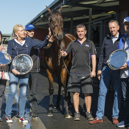 Winx-PressConference-10292017-9646 - Champion mare WINX looks at her 3 Cox Plate trophies, from 2015, 2016 and 2017, with  her owners Debbie and Paul Kepitis,...