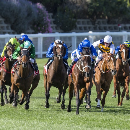 20171028:  Winx 2018 WS Cox Plate - Any image sales to the public are subject to prior approval from Racing Victoria under the terms of Bronwen's Restricted...
