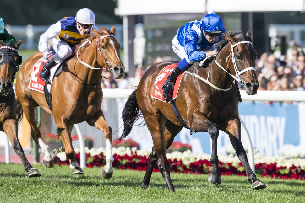 Winx-BowmanHugh-10282017-7147 - Champion mare WINX equals Kingston Town's record of 3 Cox Plate.  Ridden by Hugh Bowman.  Photo - Bronwen Healy.  The Image...