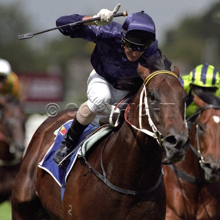 FastnetRock-1254-26 - Caulfield 26-02-05.  Fastnet Rock and Glen Boss win the G1 Oakleigh Plate for trainer Paul Perry