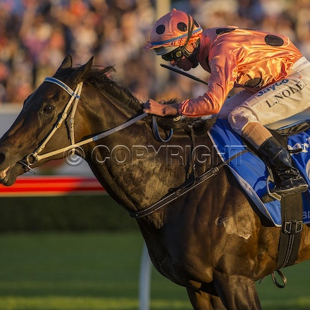 BlackCaviar-NolenLuke-04132013-DSC_6807 - Black Caviar (Bel Esprit - Helsinge) wins the G1 TJ Smith Stakes at Royal Randwick on 13 April 2013.  Trained...