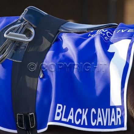 BlackCaviar-05122012-DSC_3738