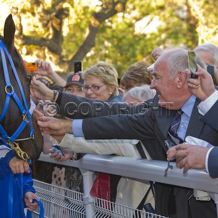 BlackCaviar-Crowd-04282012-DSC_1204