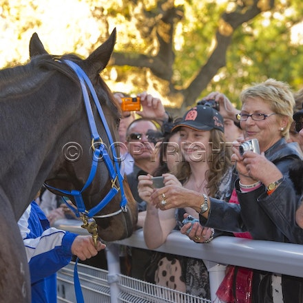 BlackCaviar-Crowd-04282012-DSC_1219