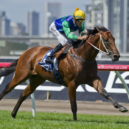 All Too Hard (racetrack) - ALL TOO HARD (Casino Prince x Helsinge).  4 time G1 winner and half brother to unbeaten champion BLACK CAVIAR.