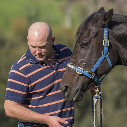 BlackCaviar-MoodyPeter-05102013-DSC_1100 - Black Caviar (Bel Esprit - Helsinge) pictured on Friday 10 May 2013 with trainer Peter Moody, at his Belgrave...