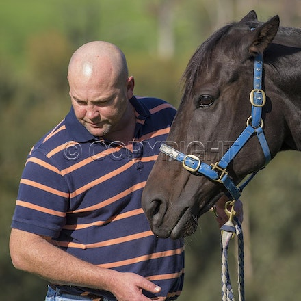BlackCaviar-MoodyPeter-05102013-DSC_1101 - Black Caviar (Bel Esprit - Helsinge) pictured on Friday 10 May 2013 with trainer Peter Moody, at his Belgrave...