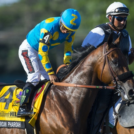 AmericanPharoah-EspinozaVictor-08022015-5907 - 2015 Triple Crown winner American Pharoah (Pioneerof The Nile - Littleprincessemma) wins the G1 Haskell...