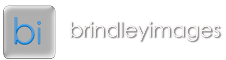 brindleyimages banner website copy