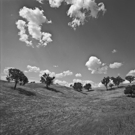 Albury Landscape - Each archival photograph is stamped and signed by Robert and a brief description of how it was taken.