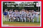 2014 Hornell Dodgers (Enhanced Photos)
