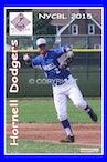 2015 Hornell Dodgers - Enhanced Photos