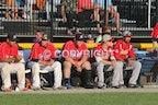 2015 NYCBL All Star Baseball Game (818 Photos)