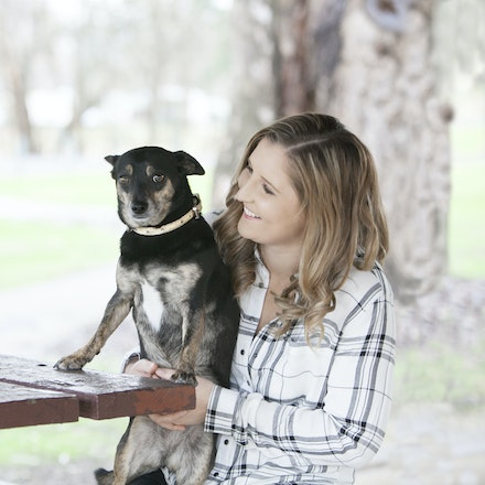 Audrey's Place - Top end dog grooming, pet walking + sitting