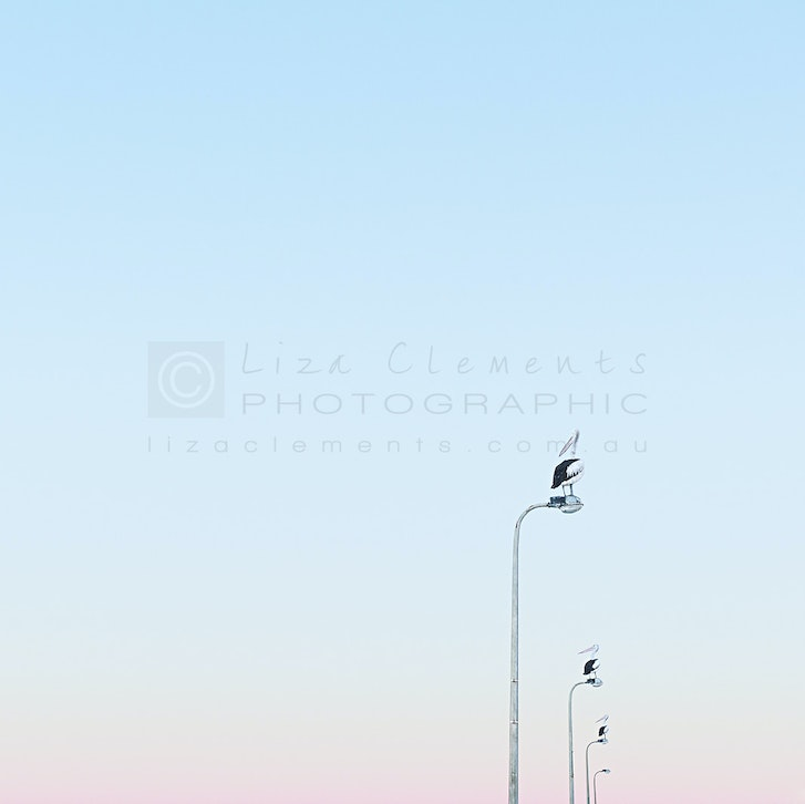 First Light, HMB© - First Light Half Moon Bay, Melbourne, Victoria Open Edition Silver Distinction VIPPY Award, 2015 AIPP Victorian Professional Photography...