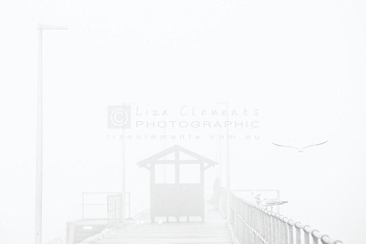 Fog, Mordialloc© - Fog, Mordialloc Melbourne, Victoria Open Edition