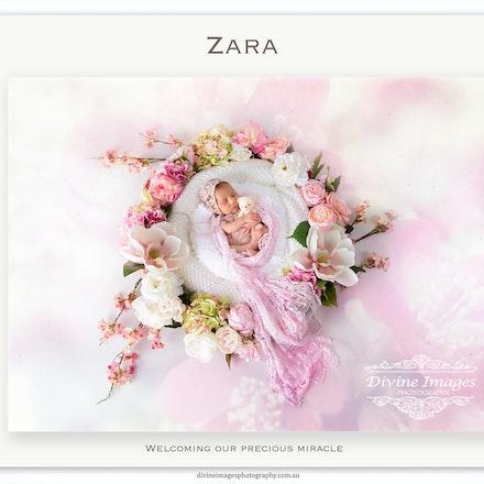 Zara | newborn