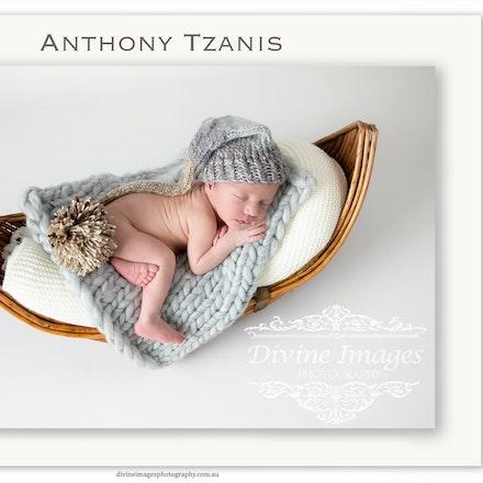 Anthony Tzanis