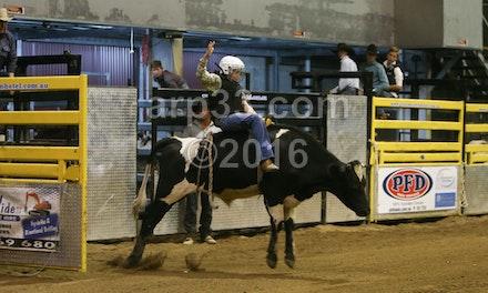 bullride-180
