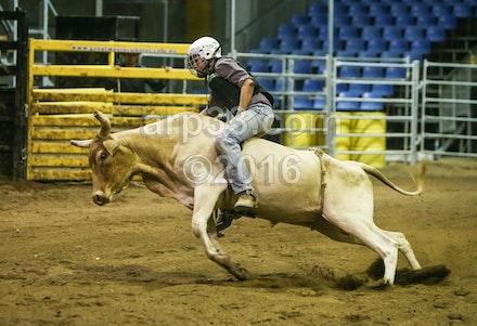 bullride-192