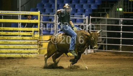 bullride-193