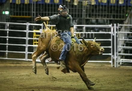 bullride-194