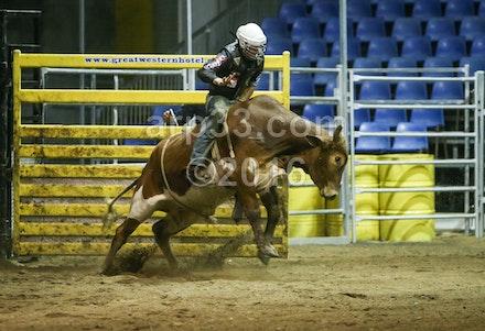 bullride-195