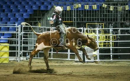 bullride-196