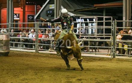 bullride-197
