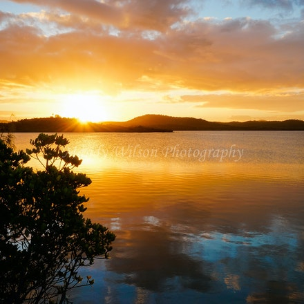 Causeway Lake - QLD