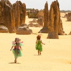 Pinnacles Fairies