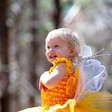 Pines Fairy