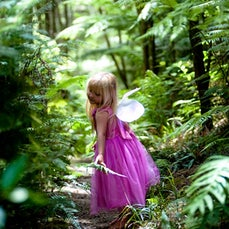 New Zealand Fairies