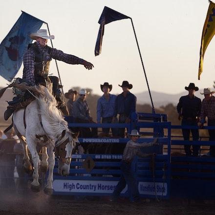Rodeo 8 bronco _4628