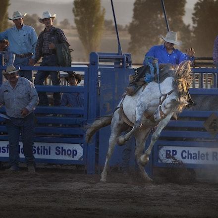 Rodeo 10 bronco _4658