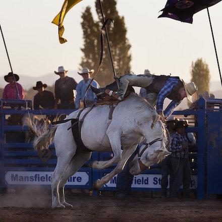 Rodeo 13 bronco _4619