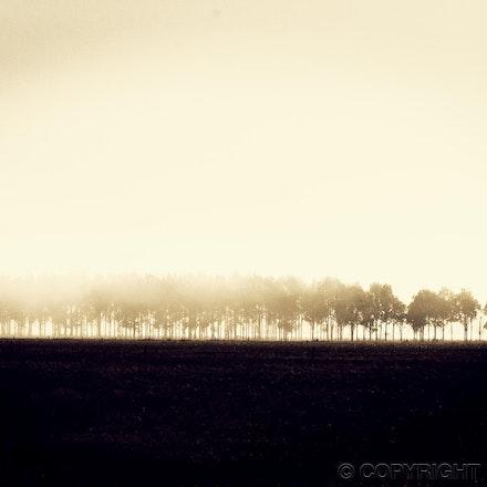 Break of Morning - South East of South Australia