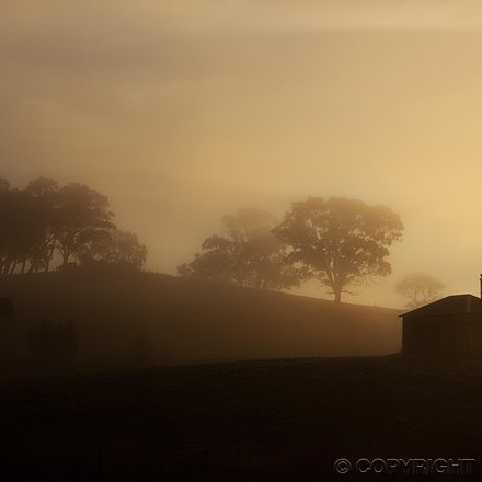 Misty Sunrise - Winner - 2012 Capture the Season competition. Misty sunrise, mid-winter in the Adelaide Hills